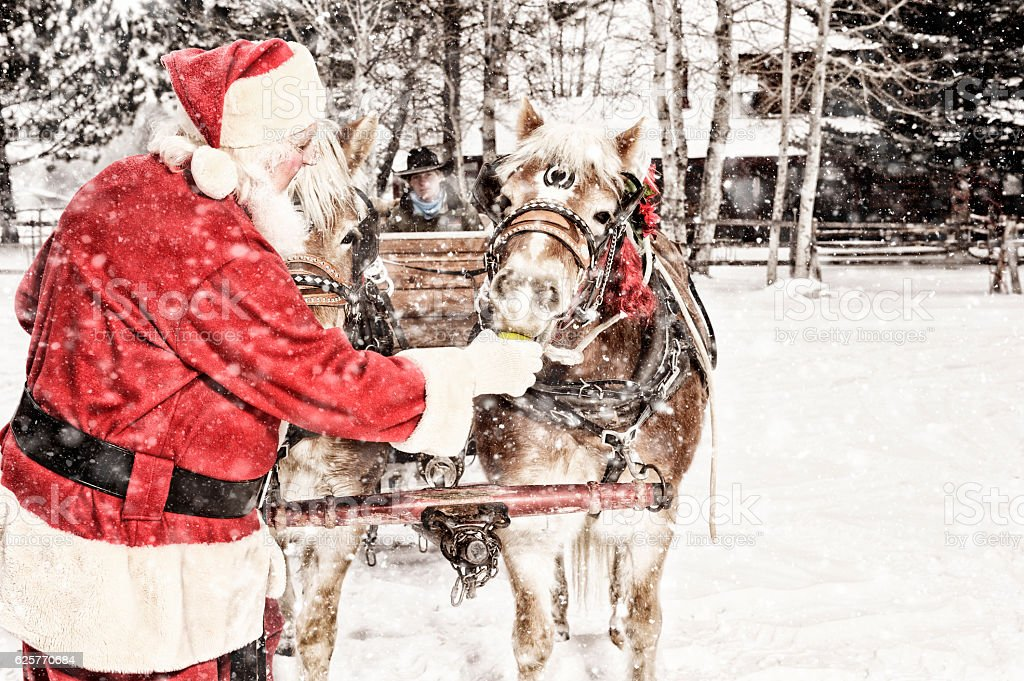 Santa Feeding Green Apples To A Team of Horses stock photo