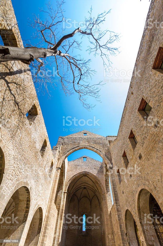 Santa Maria dello Spasimo roofless church in Palermo, Italy stock photo