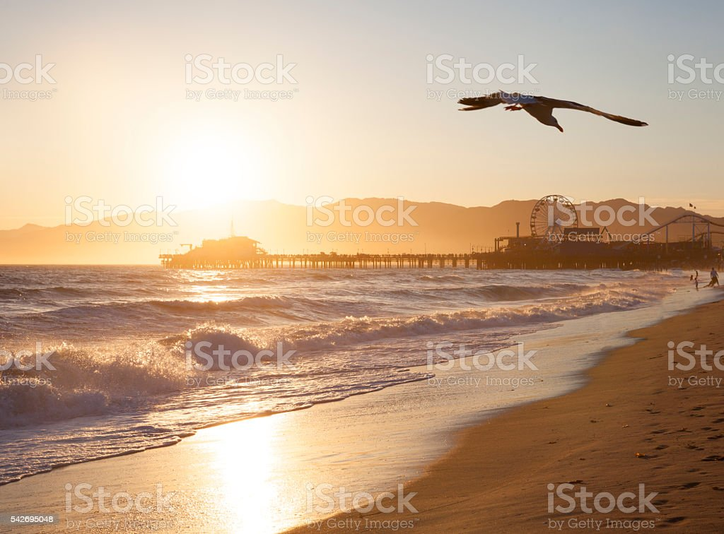 Santa Monica Beach at sunset stock photo