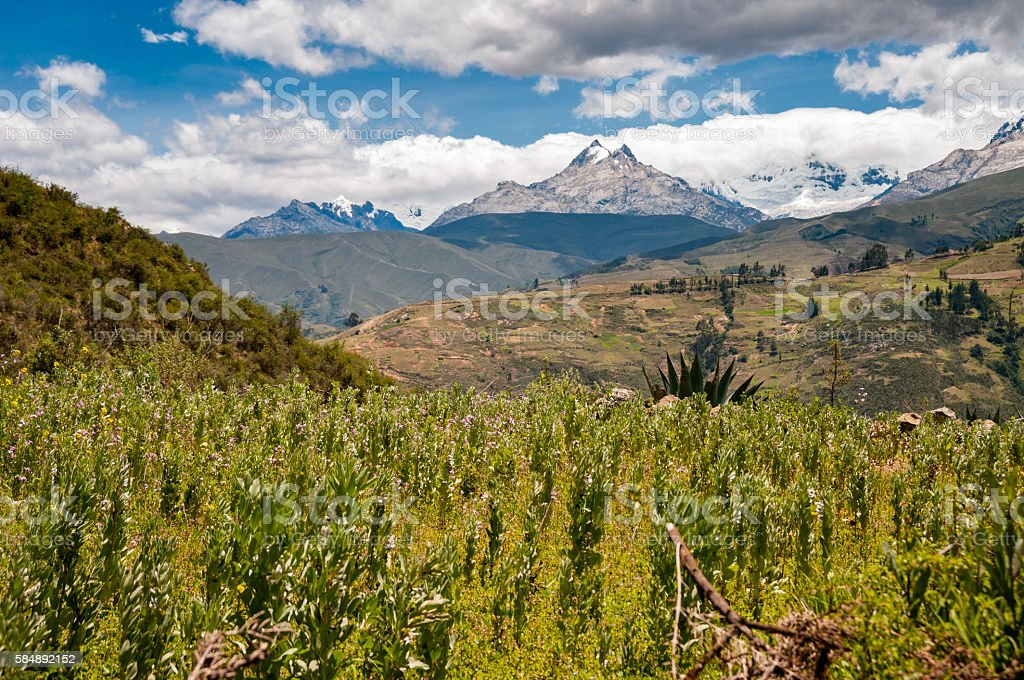 Santa Valley (Callejón de Huaylas) Near Huaraz In Peru stock photo