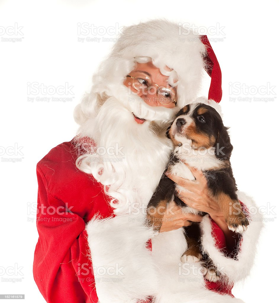 Santa with dog royalty-free stock photo