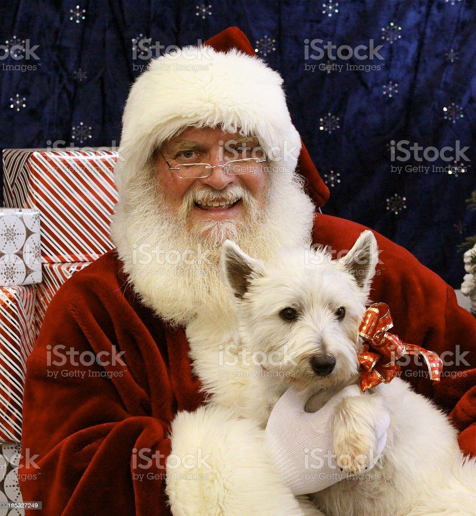 Santa With Dog stock photo