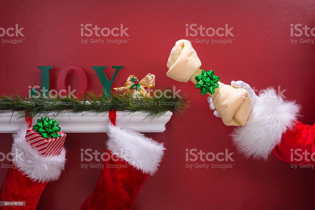 Santa's hand holding rawhide dog bone next to Christmas Stockings stock photo