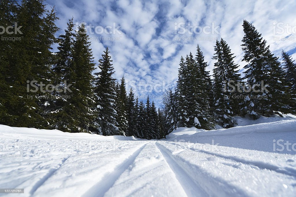 santa's trail royalty-free stock photo