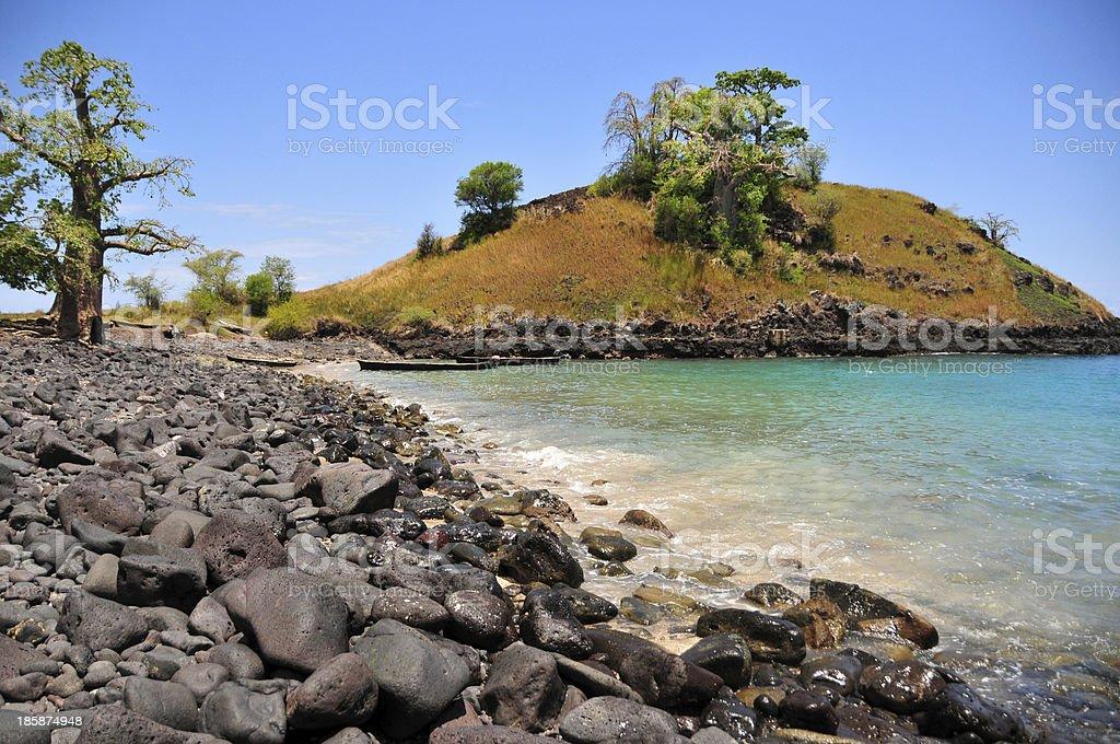Sao Tome: baobab at Blue Lagoon, Lobata district stock photo
