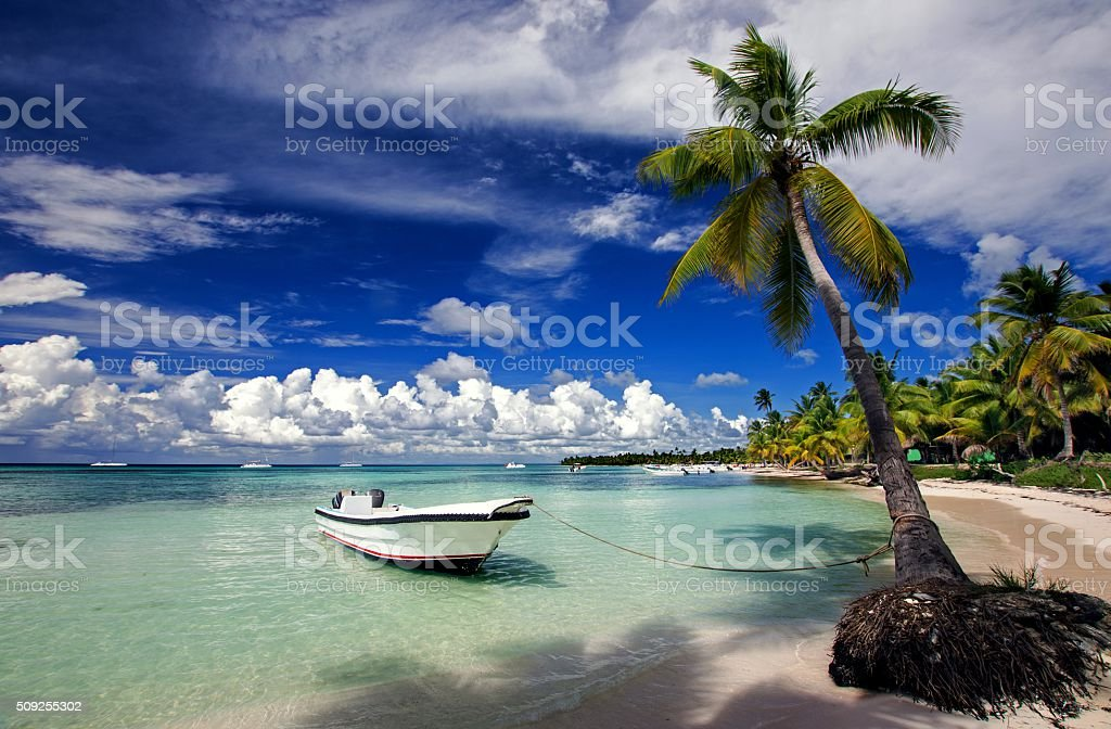 Saona Beach stock photo