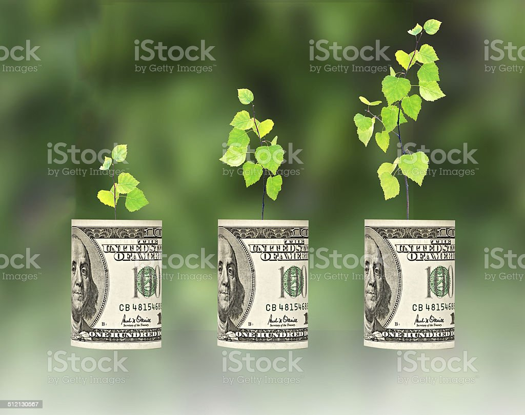sapling growing from dollar bill stock photo