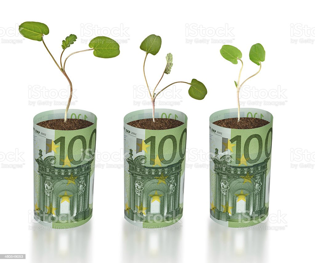 sapling growing from euro stock photo