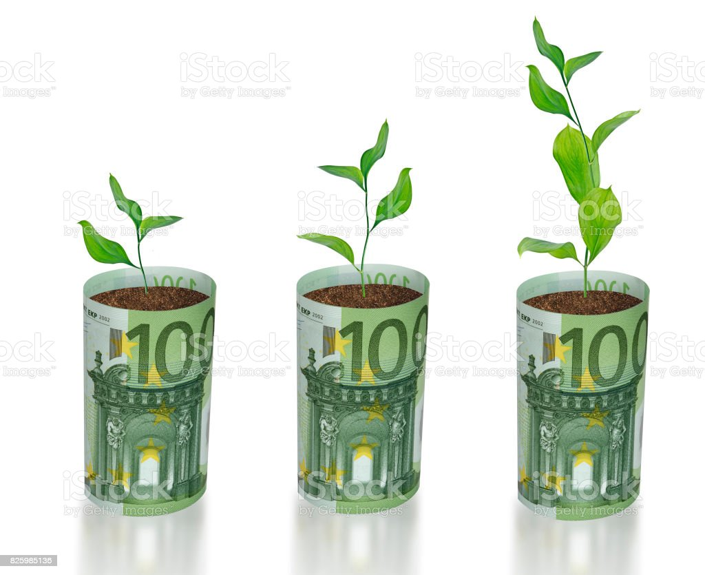 sapling growing from euro stock photo
