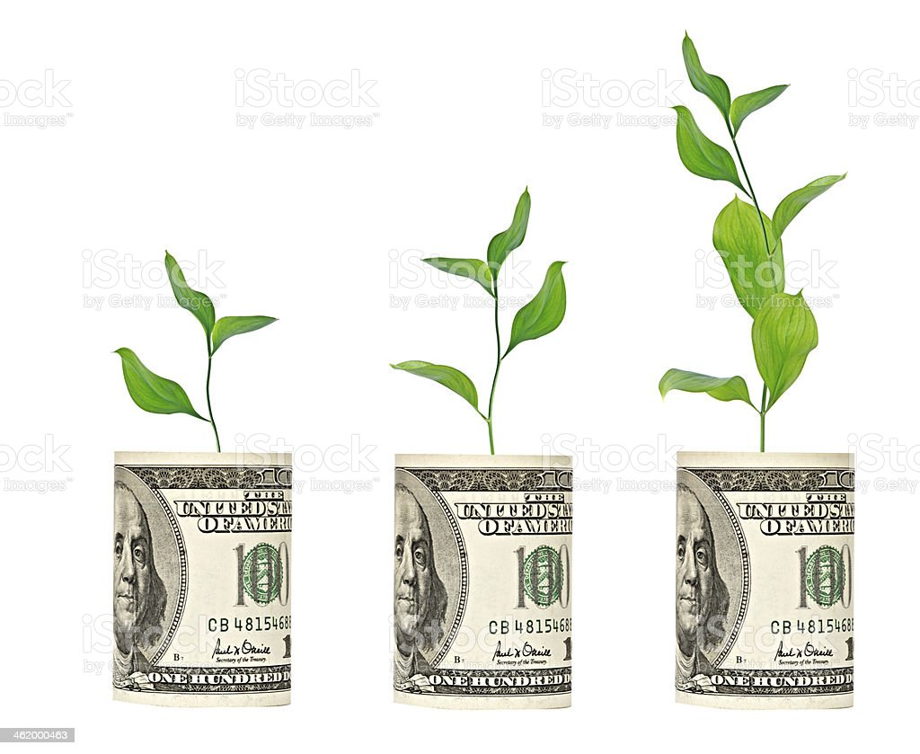 saplings growing from dollar bill stock photo