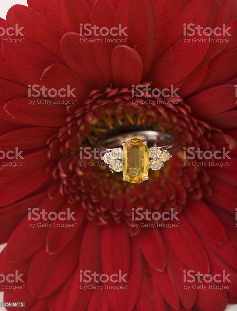 Sapphire Ring royalty-free stock photo
