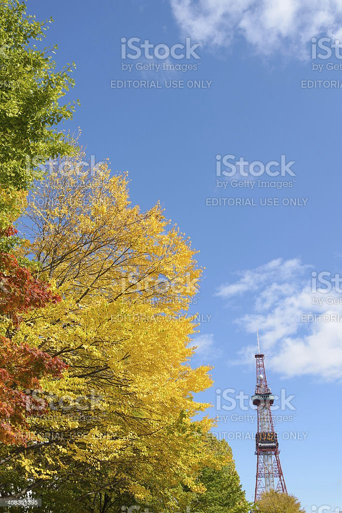 Sapporo Odori Park in Autumn royalty-free stock photo