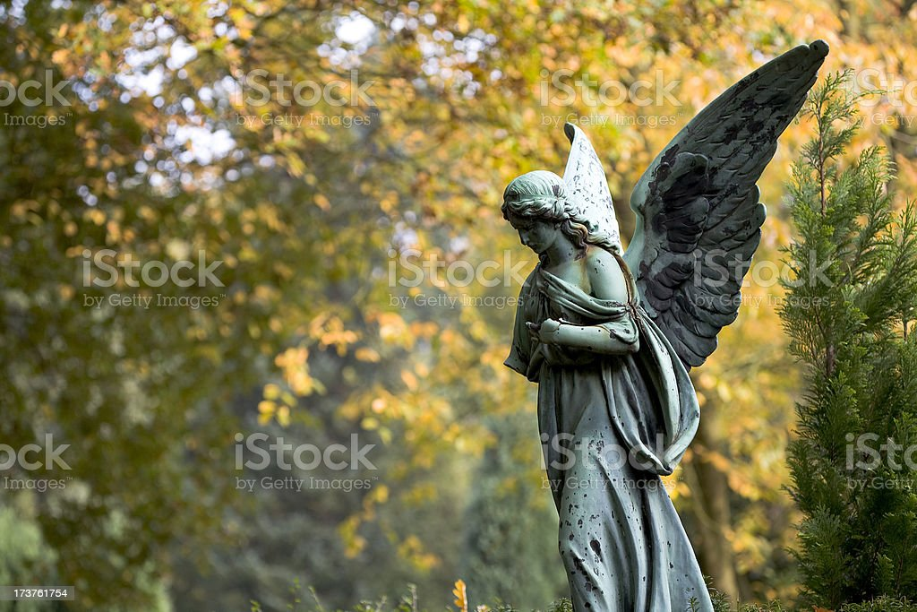 saraphim stock photo