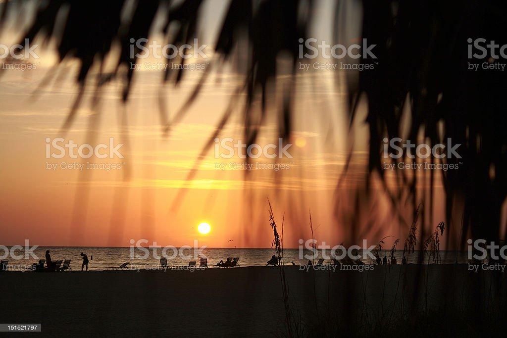 Sarasota sunset royalty-free stock photo