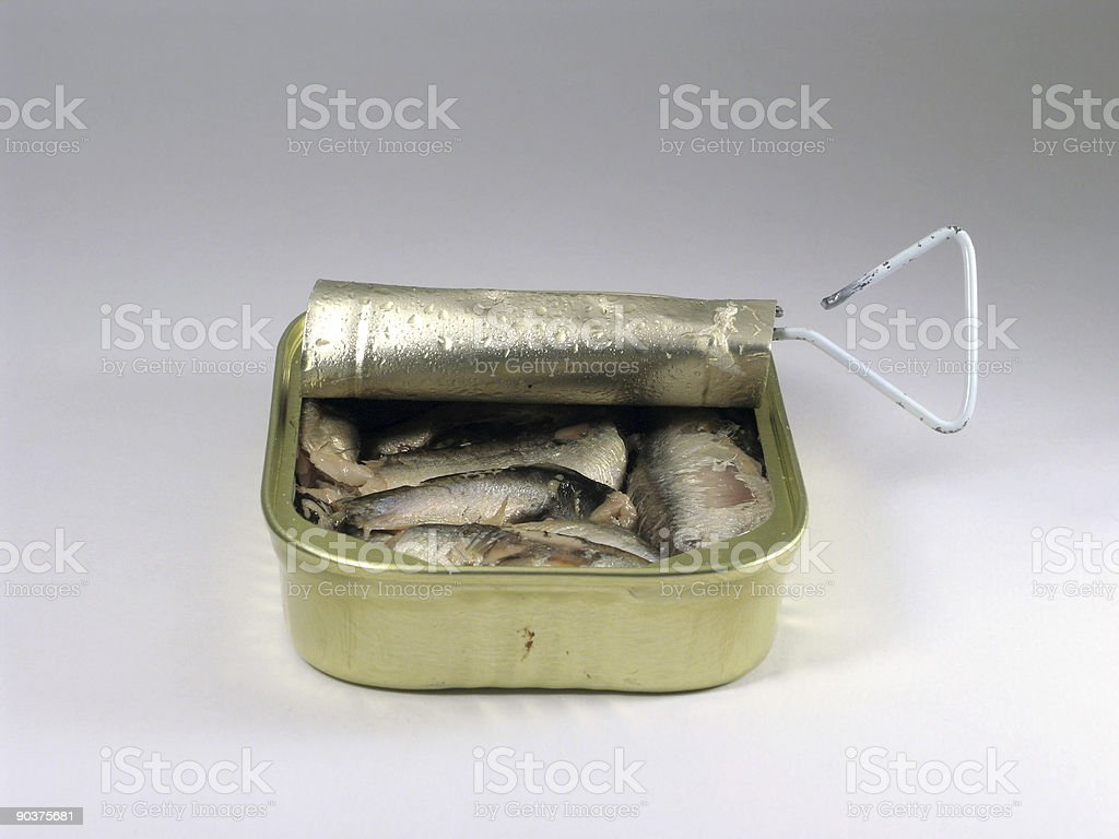 Sardine Can royalty-free stock photo