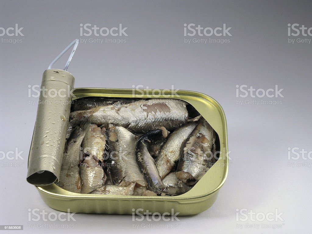 Sardine Can royalty-free stock photo