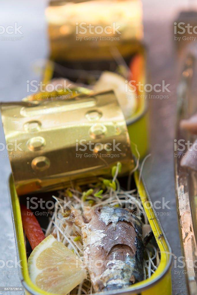 Sardine Stock Image stock photo