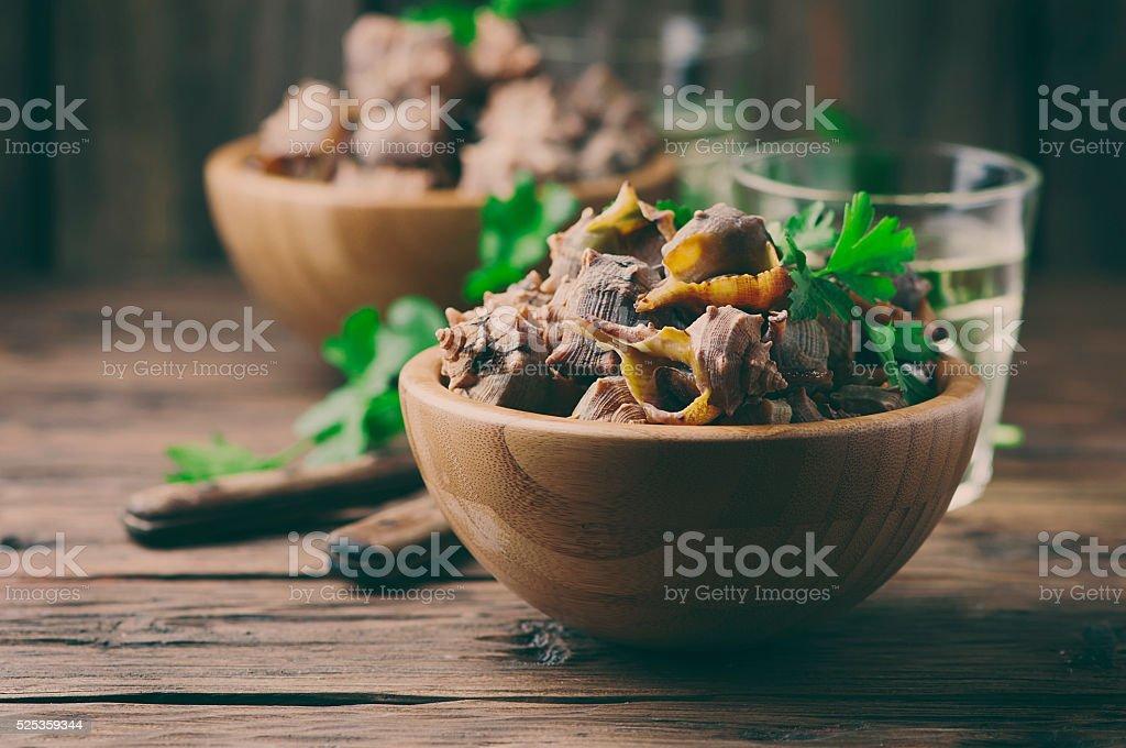 Sardinian traditional dish of murex brandaris stock photo