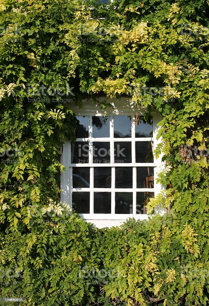 Sash Window royalty-free stock photo