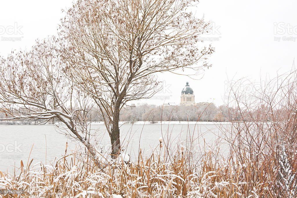 Saskatchewan Legislative Building and Wascana Lake in winter stock photo
