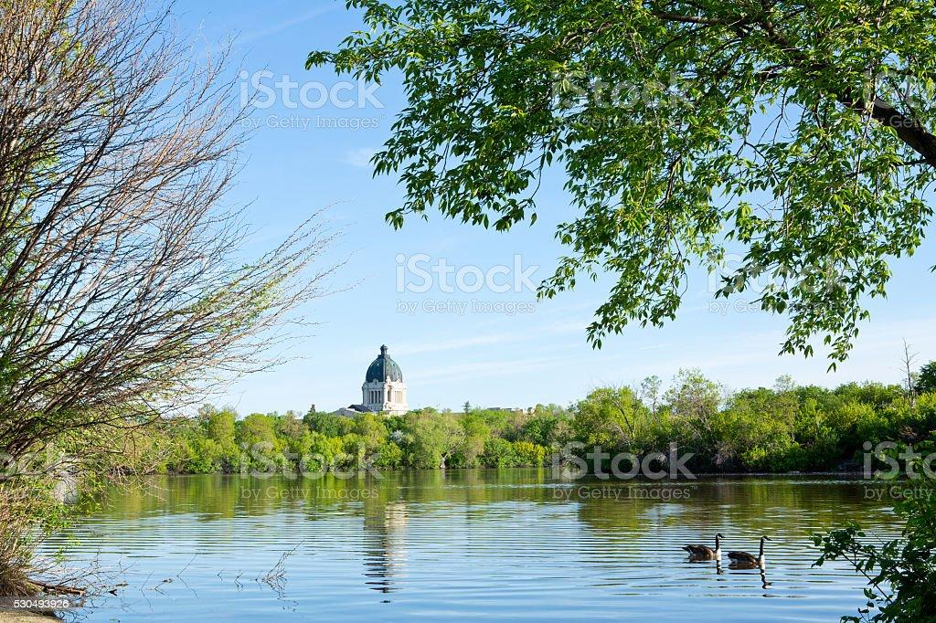 Saskatchewan Legislative Building at Wascana Lake with Canada geese stock photo