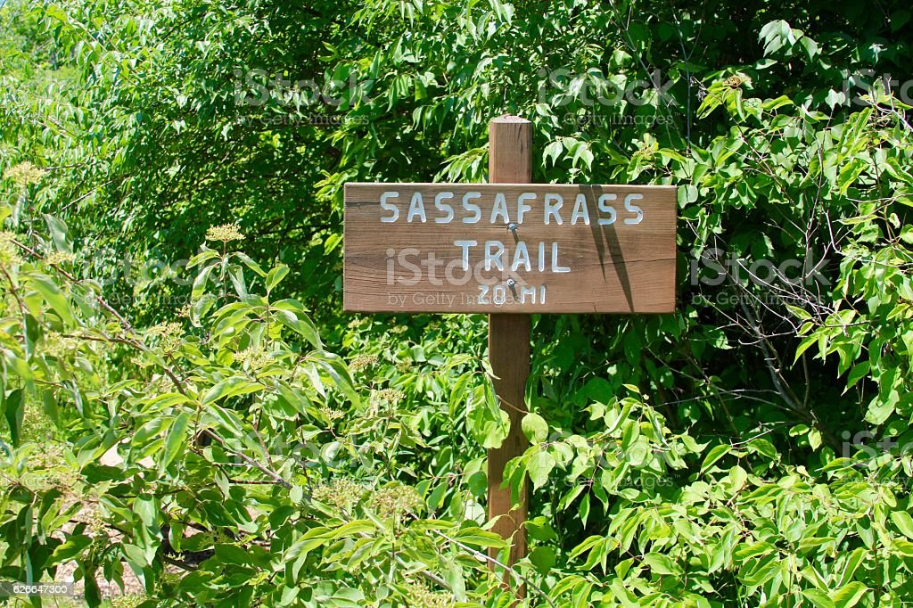 Sassafrass Trail Sign stock photo