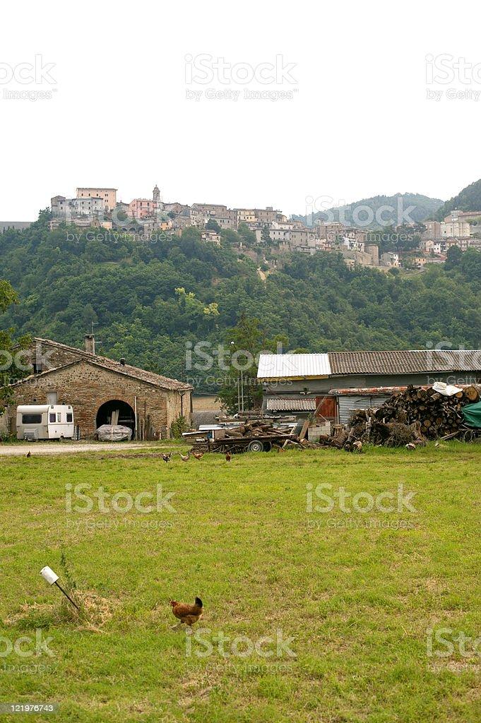 Sassocorvaro (Montefeltro, Urbino, Marches, Italy) - Town and hens royalty-free stock photo