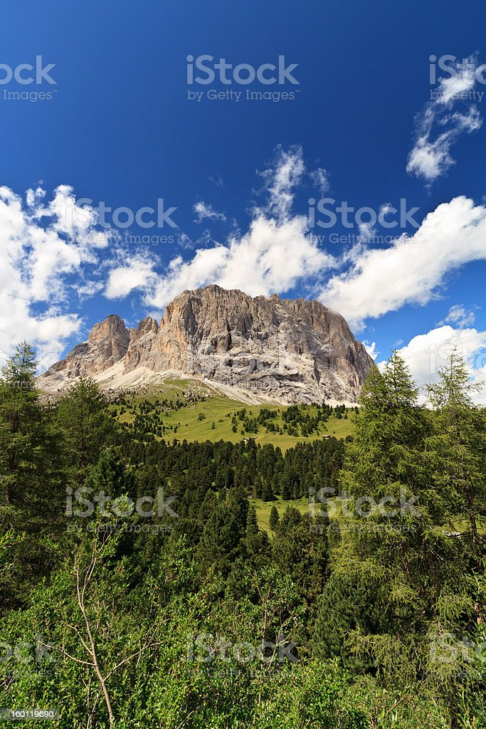 Sassolungo - Langkofel, vertical composition stock photo