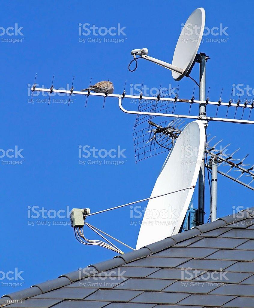 satellite dishes royalty-free stock photo