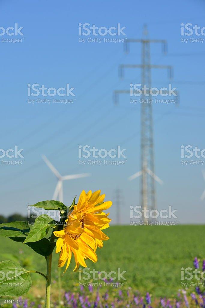 saubere Energie stock photo