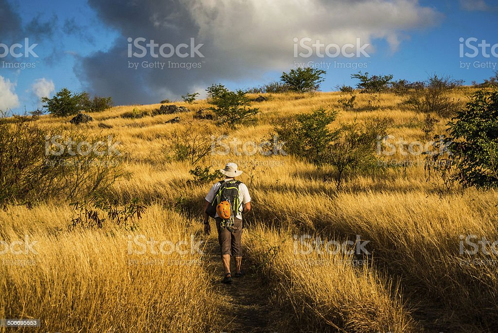 Savannah in Island of Reunion, Climbing, Hiking stock photo