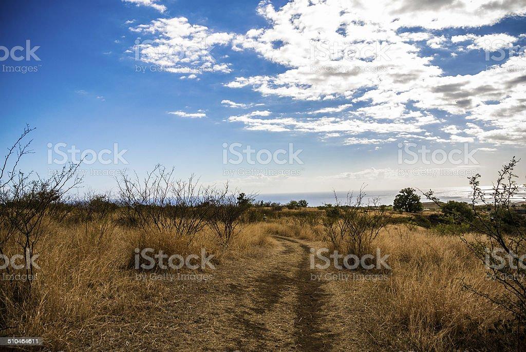 Savannah in Island of Reunion, Trail, Landscape, Hiking stock photo