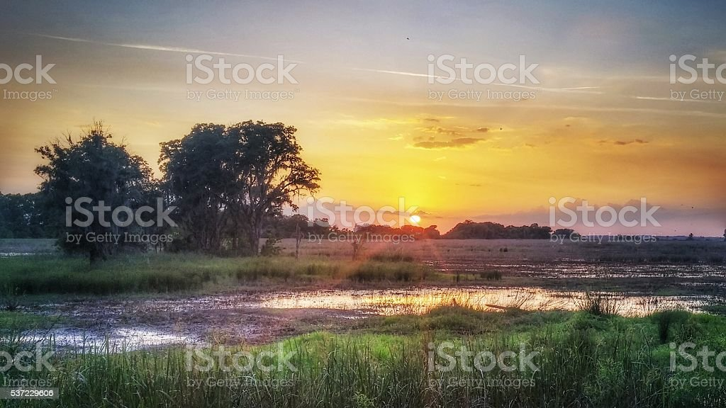 Savannah National Wildlife Refuge Waterway, Marsh, Pastel Sunset, Georgia stock photo