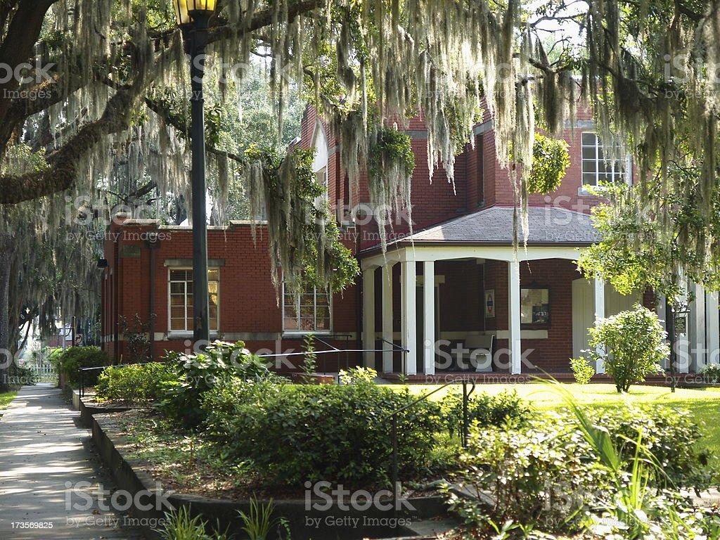 Savannah scene royalty-free stock photo