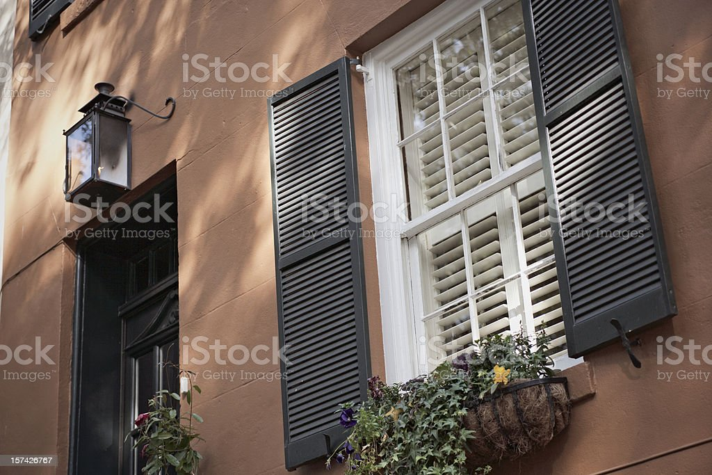Savannah Scenes royalty-free stock photo