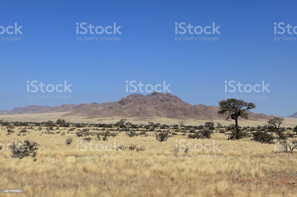 Savannenlandschaft in Namibia stock photo