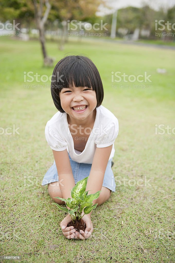 save the environment royalty-free stock photo