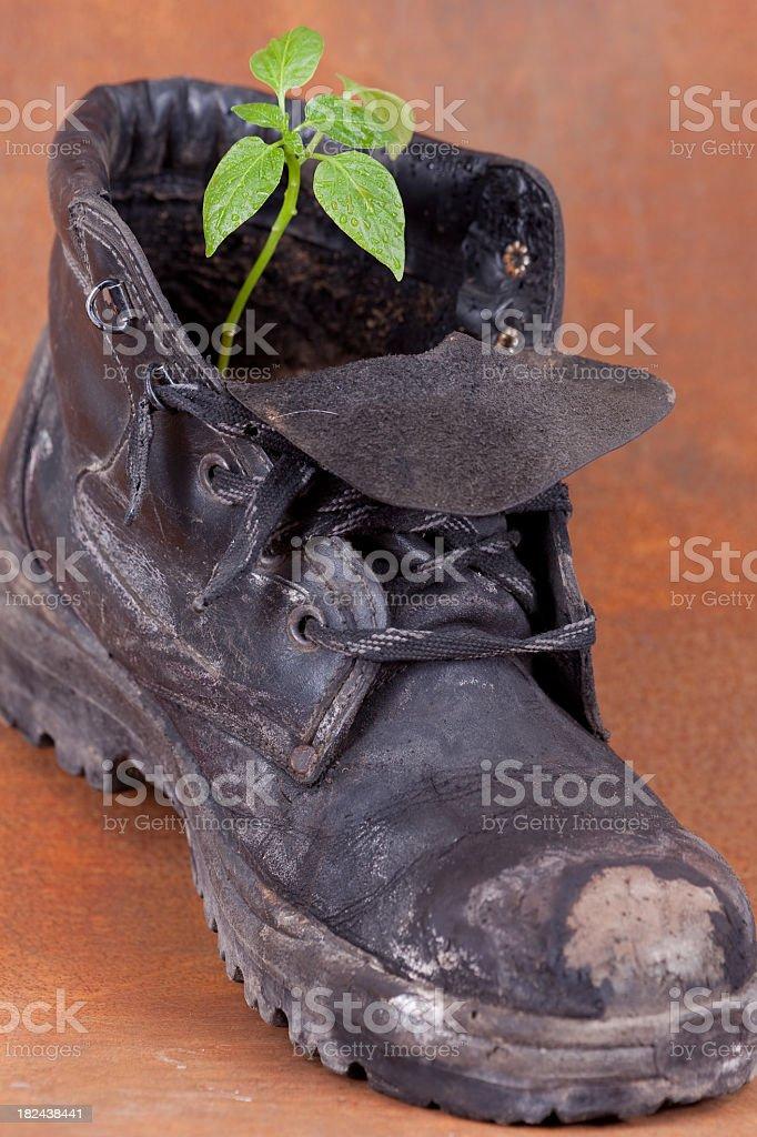 Save the Green: Day after royalty-free stock photo