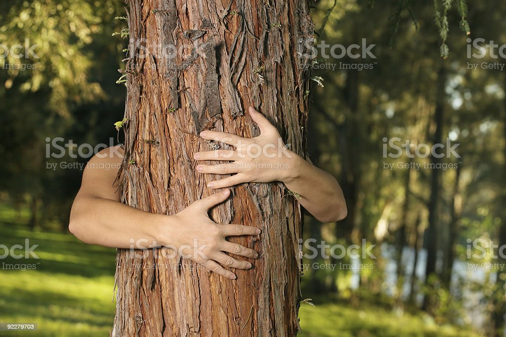 Save the trees royalty-free stock photo