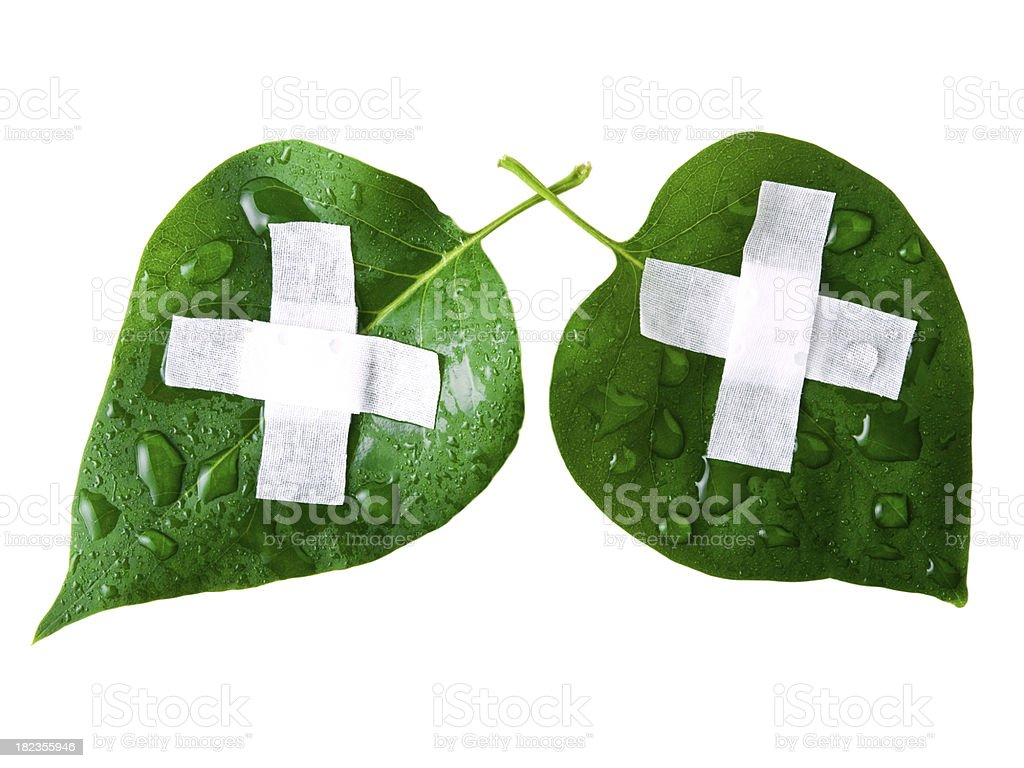 save world lungs royalty-free stock photo