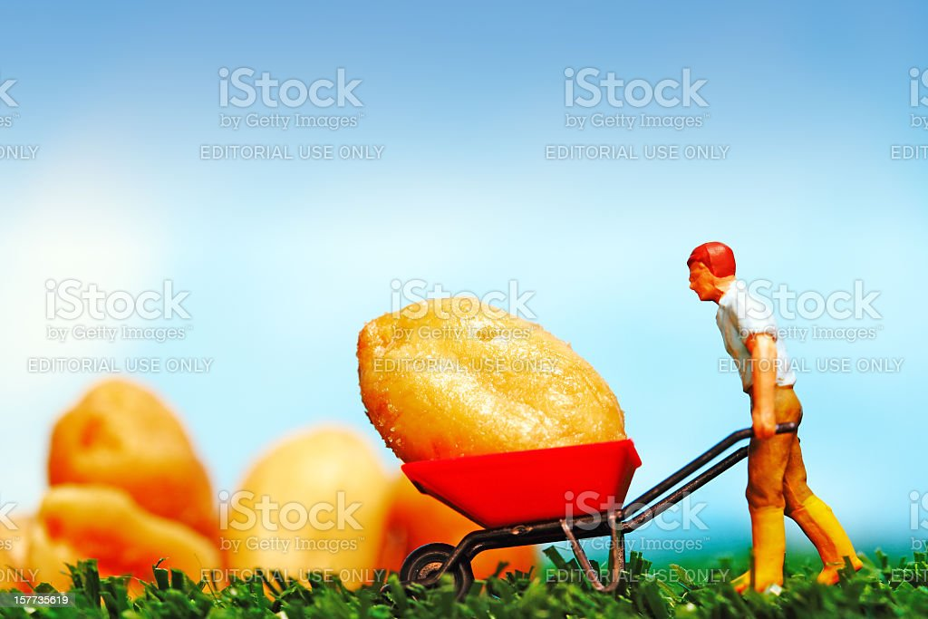 Saving Nuts stock photo