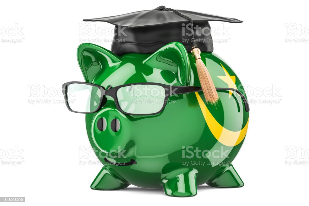 Savings for education in Mauritania concept, 3D rendering isolated on white background stock photo