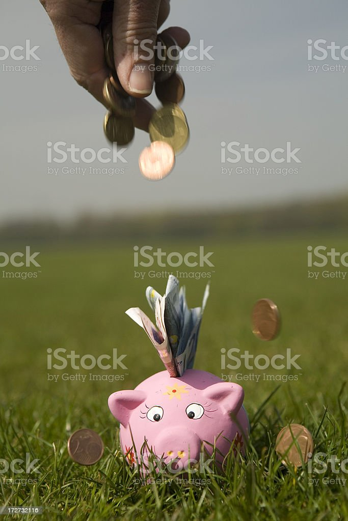 Savings in a piggy bank royalty-free stock photo