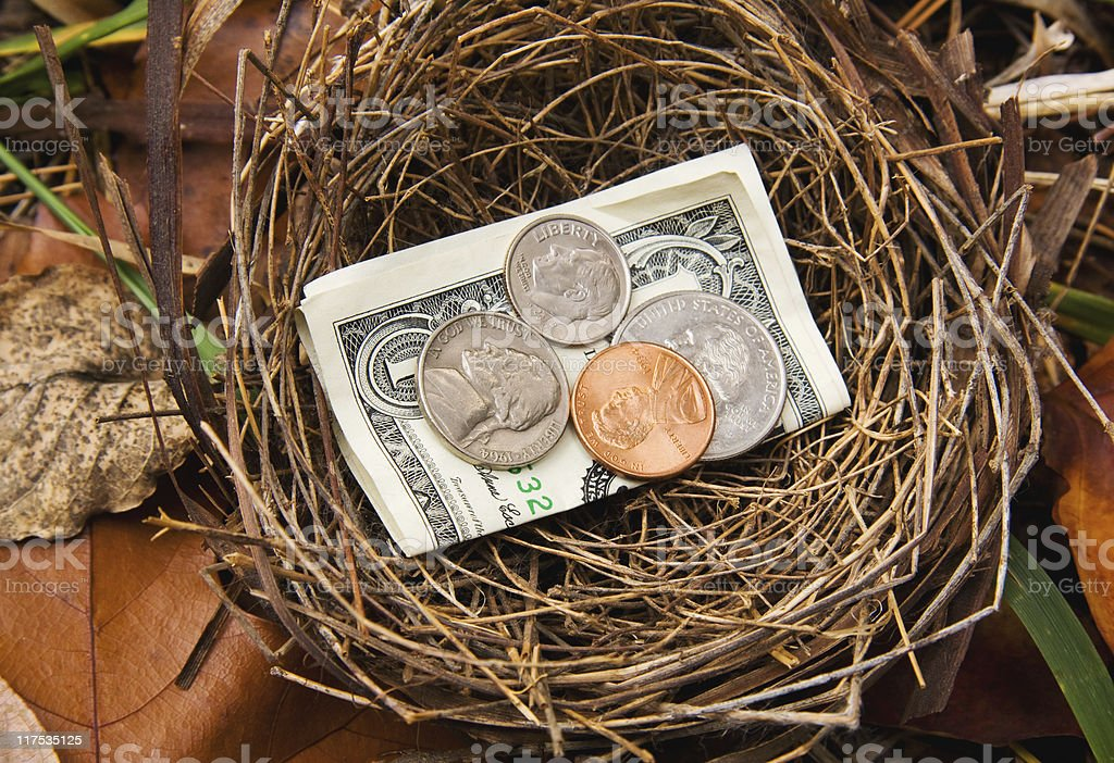 Savings Nest Egg royalty-free stock photo