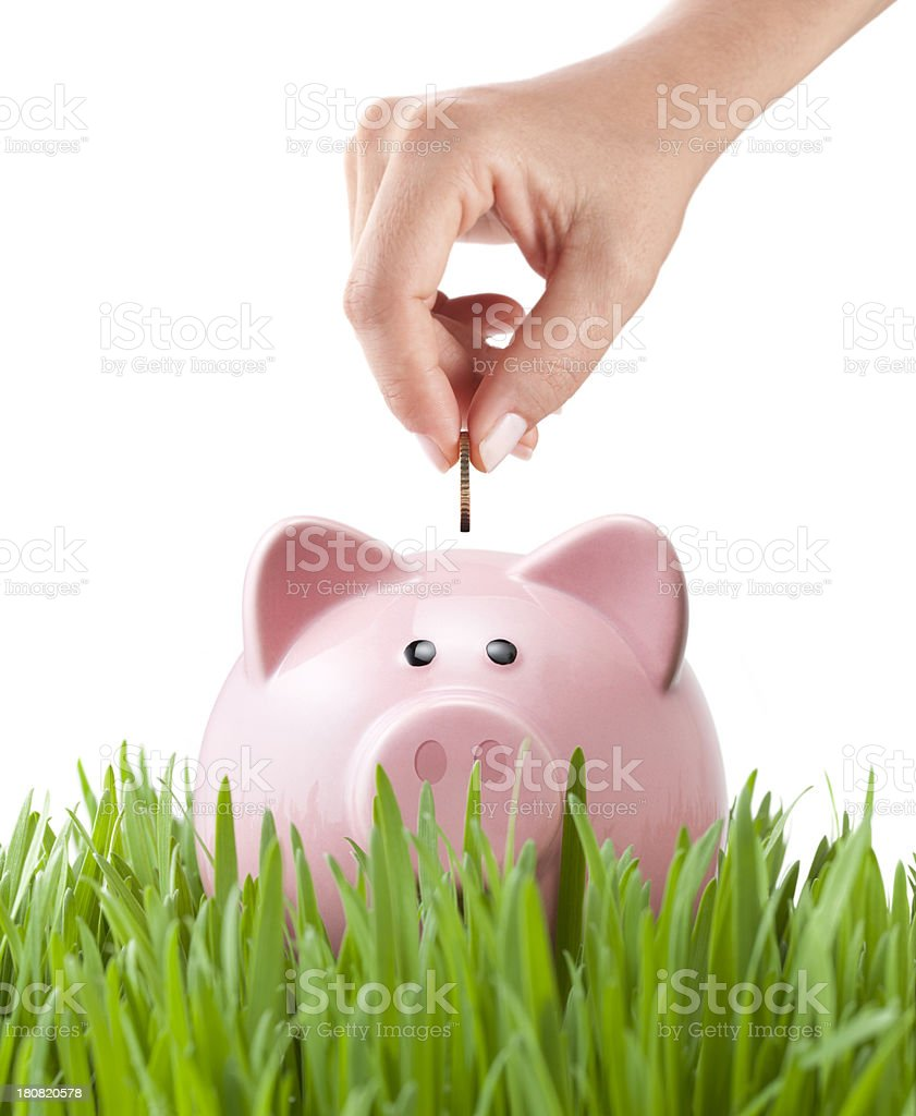 Savings. Planting seeds for the future. royalty-free stock photo