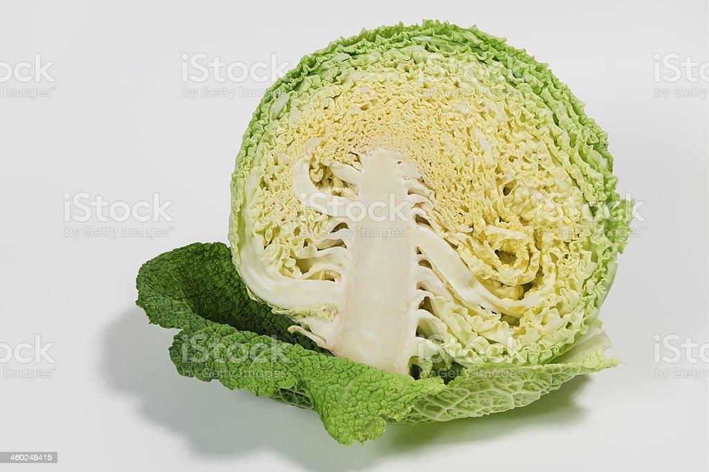 savoy cabbage (Brassica oleracea)  image size XXXLarge stock photo
