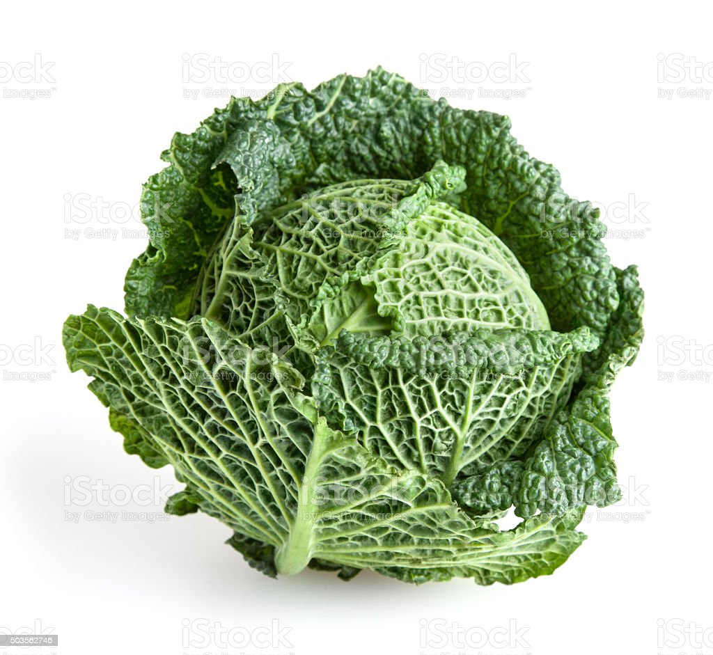 Savoy cabbage isolated on white background with clipping path stock photo