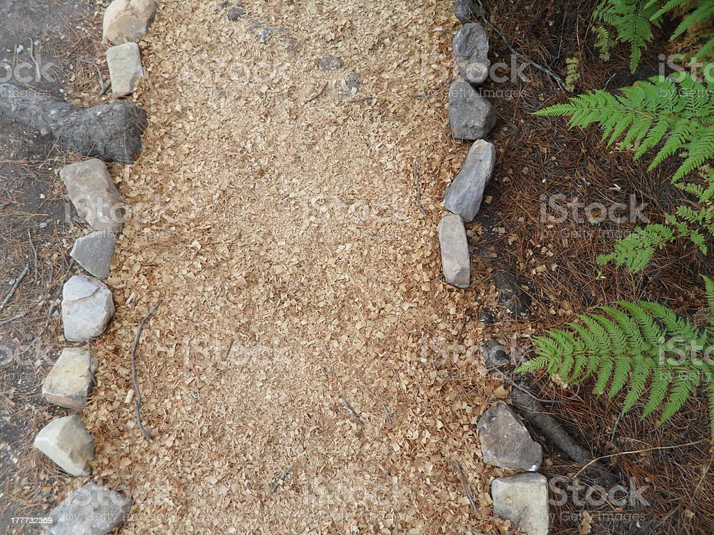 Sawdust garden lined by ferns royalty-free stock photo