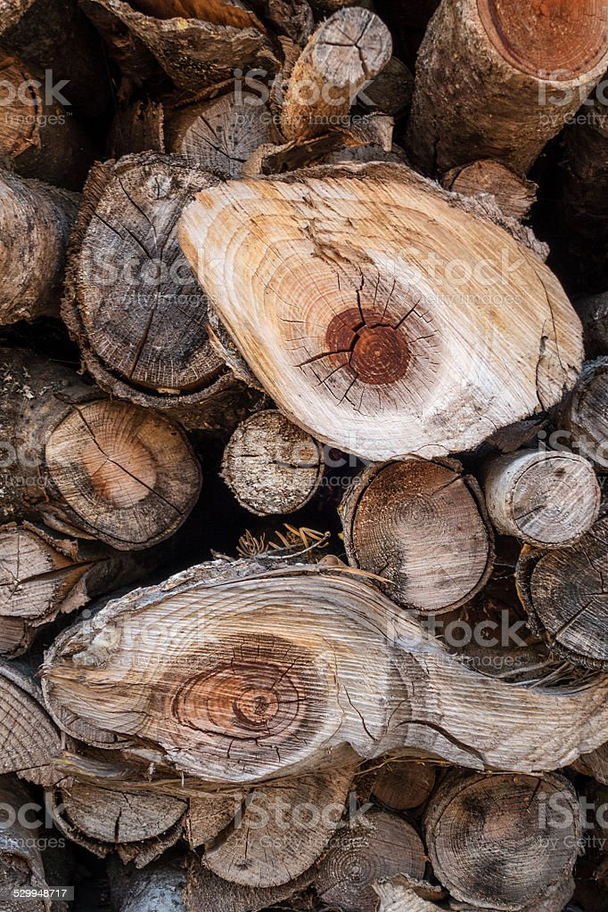 Sawed, stacked branches royalty-free stock photo