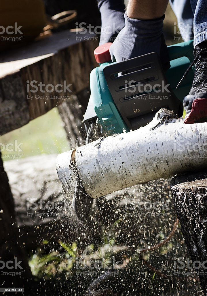 Sawing firewood royalty-free stock photo